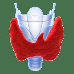 Autoimmunologiczne zapalenie tarczycy Hashimoto dieta postępowanie dietetyczne